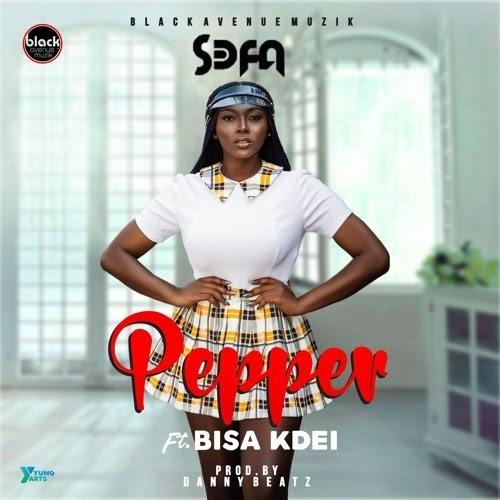 Sega Ft. Visa Kdei - Pepper (Prod. By Danby Beatz).