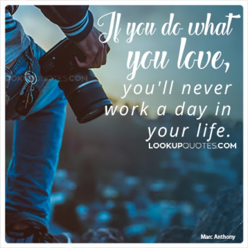 If You Do What You Love Youll Never Work A Day In Your Life