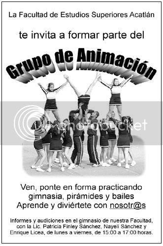 Grupo de Animación