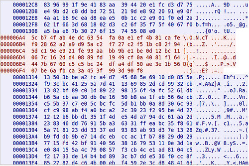Hexdump showing encrypted SILC Chat