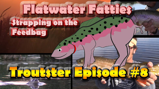 Flatwater Fatties Troutster Episode 8 | Troutster.com - Fly Fishing and Trout Information - Facts, Tips and Tricks
