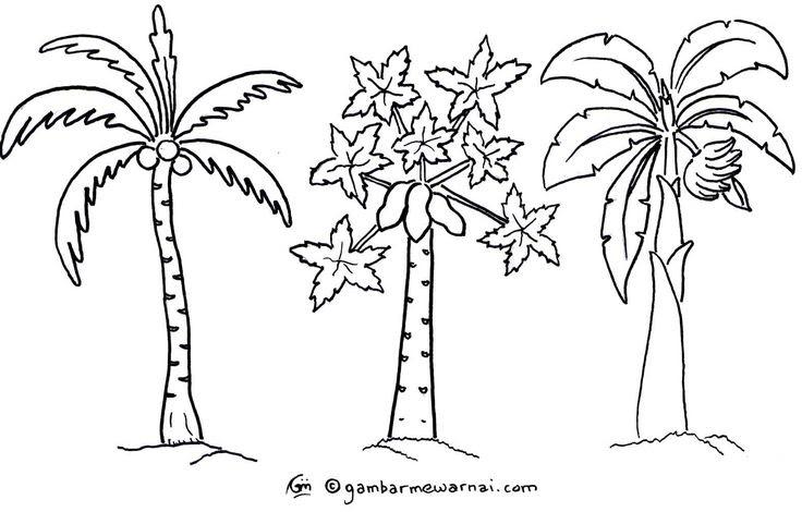 Mewarnai Gambar Pohon Singkong Wartisen
