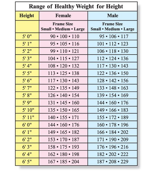 body fat percentage versus bmi