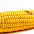 Syngenta Facing Lawsuits Over Genetically Modified Corn Seed Sales