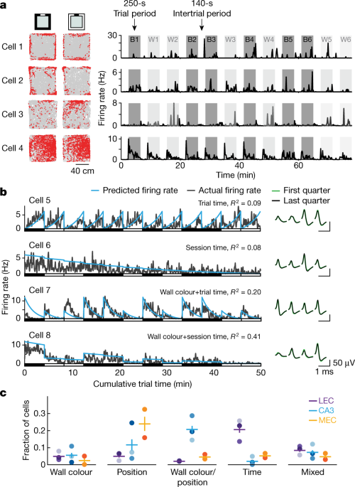Integrating time from experience in the lateral entorhinal cortex | Nature