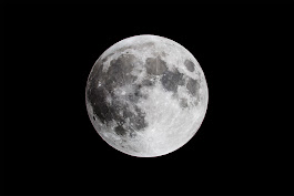 Pools of water ice found hiding in the darkest recesses of the moon