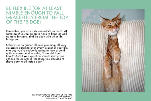 Ignore Everyone Only 90% of the Time: Cat Rules for Actual Happiness