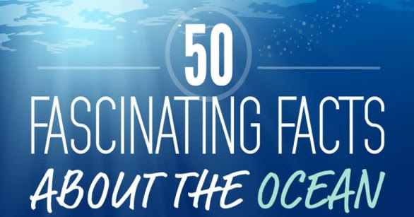 50-fascinating-facts-about-the-ocean-in-one-giant-infographic_cover