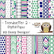 Trendsetter Digital Papers 2: Graphics for Teachers