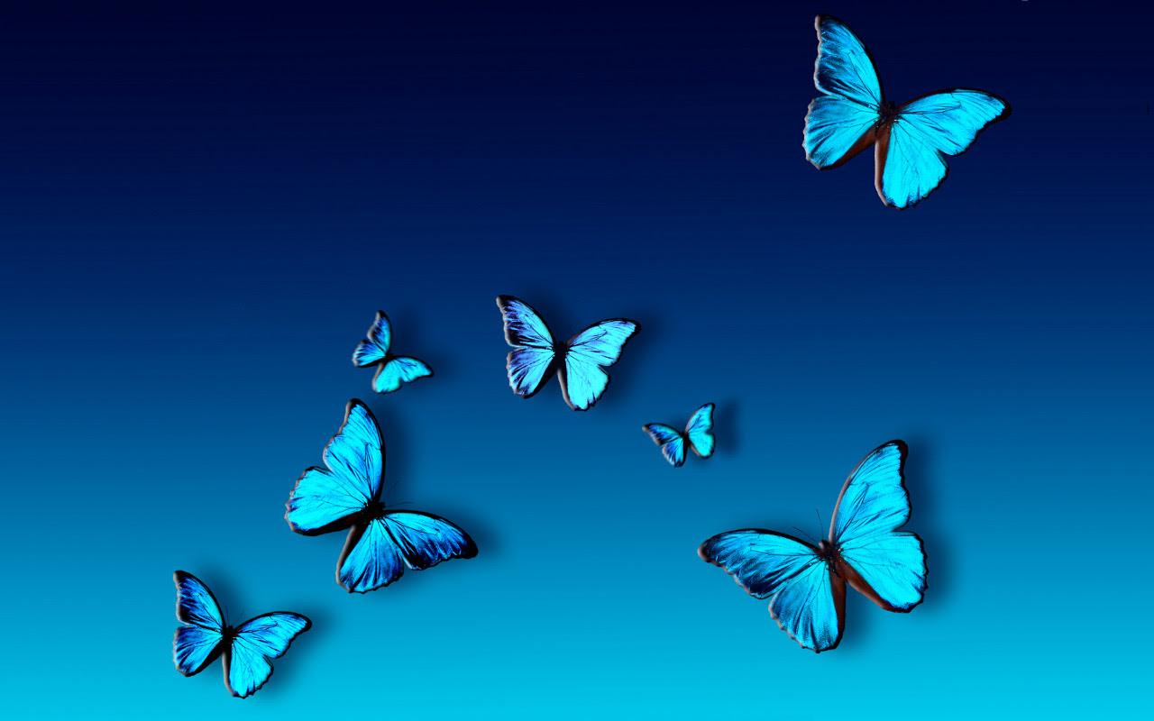 Blue Butterfly Wallpaper Background - WallpaperSafari
