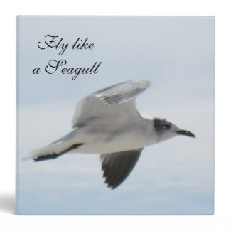 Flying Seagull Binder