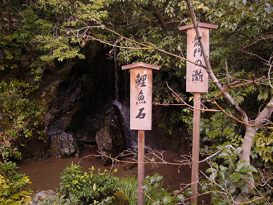 金閣寺後面花園的鯉魚石