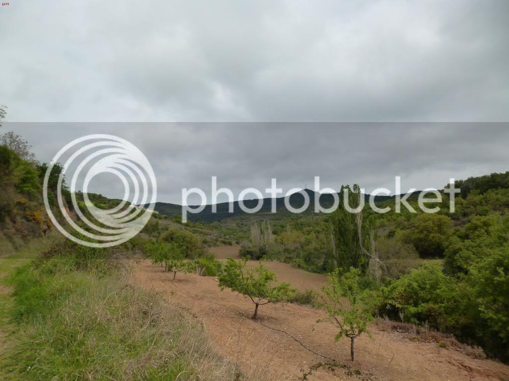 photo VUELTAMONTEJURRABTT21-04-14044_zpsdd5610f8.jpg