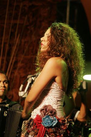 Cantora pernambucana já tem 12 discos lançados. Crédito/; Jozart/Divulgação