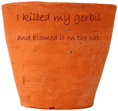 I killed my gerbil and blamed it on the cat.