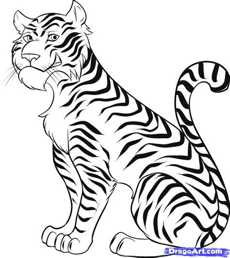 draw  cartoon tiger step  step rainforest