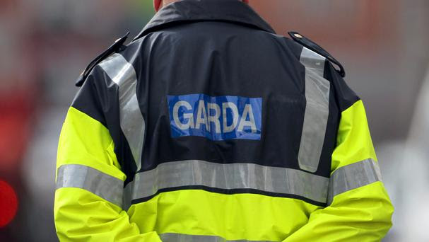 Gardai appealed for witnesses to the collision to come forward