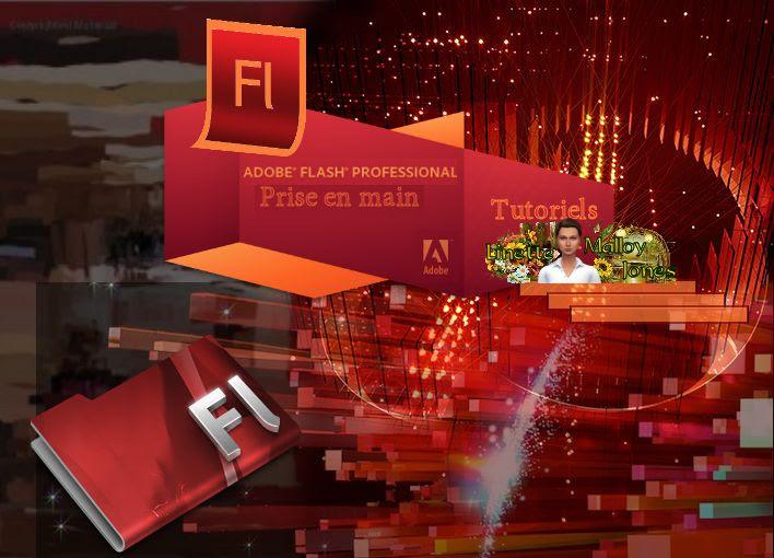 Utilisation d'Adobe Flash