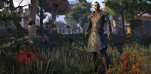 Discovery Pack Pre-order Bonus Guide Of ESO Morrowind, ESO news, tips, and guides in VirSale