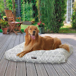"Kirkland Signature 40"" Square Tufted Indoor/Outdoor Dog Bed, Pattern"