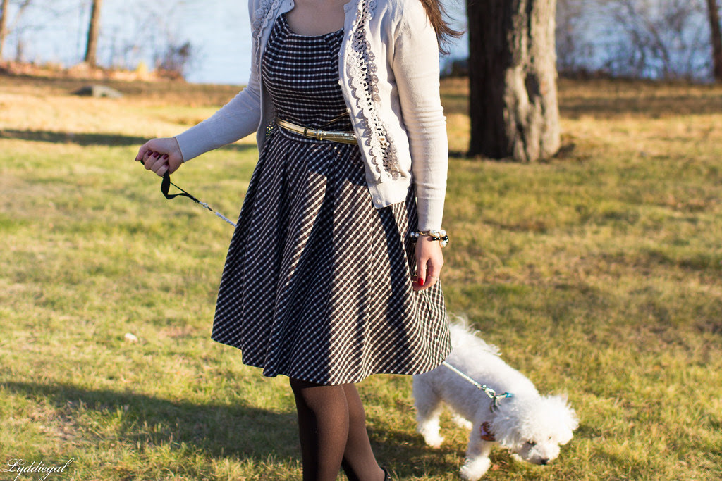gingham dress cardigan thanksgiving-1.jpg
