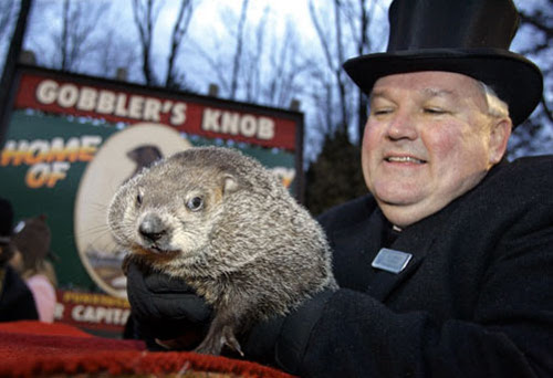 [Photo of Punxsutawney Phil the groundhog]