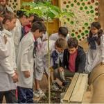 ECOESCUELA. Concurren alrededor de 45 alumnos y en un futuro llegará a 100.