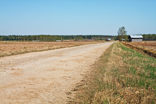 Gravel Road By The Fields