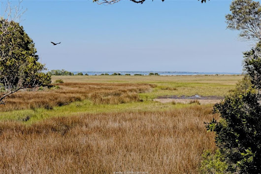 Land/Lots for sale in Hilton Head Island, South Carolina, 351753