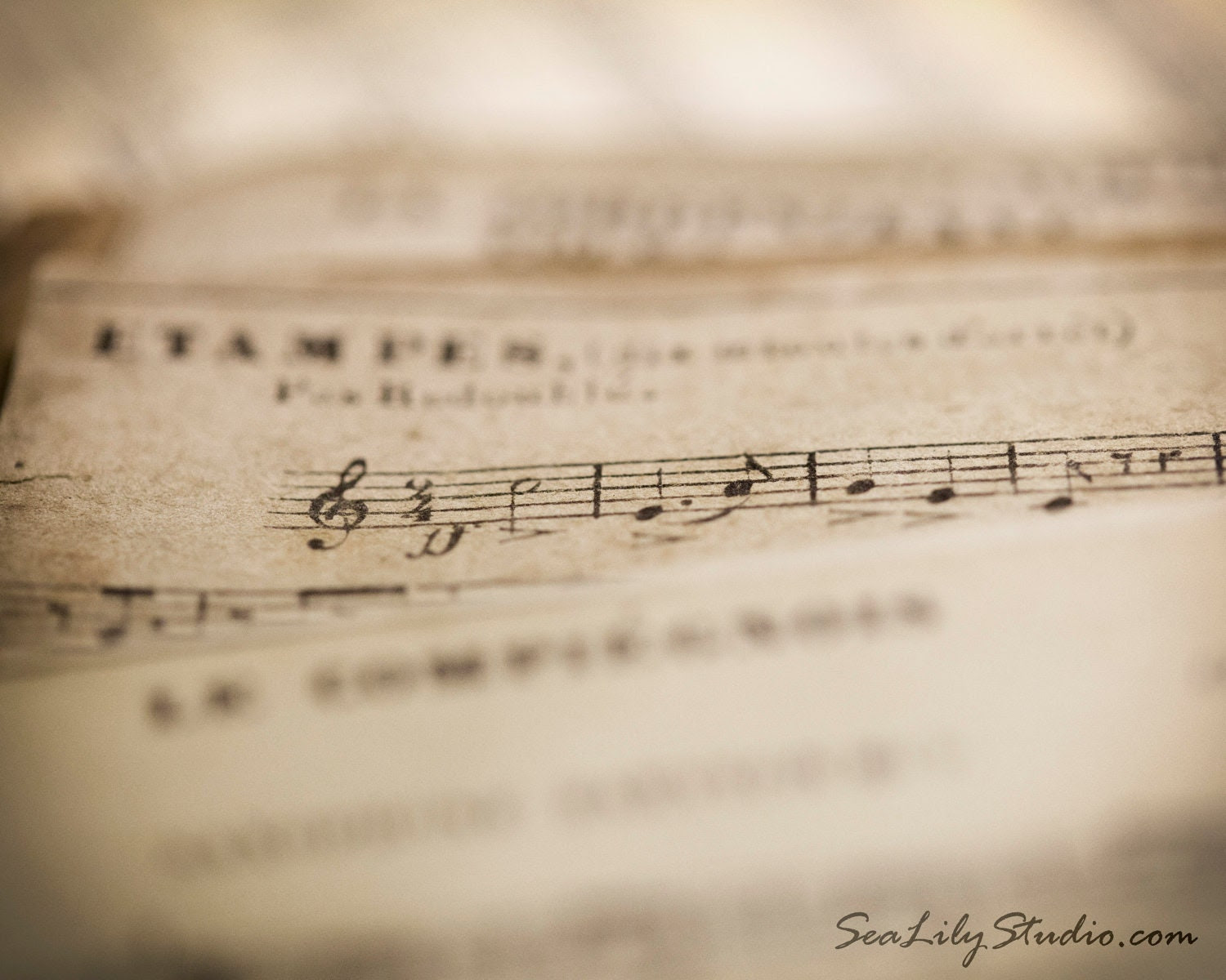 Vintage Sheet Music - 8x10 - Fine Art Print - SeaLilyStudio