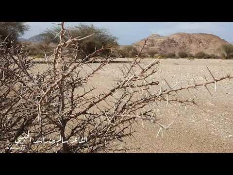 الشاعر سالم بن راشد الحبسي / عود الشكل