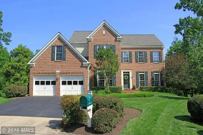 Lake Manassas golf community real estate for sale in Northern Virginia NOVA Prince William County
