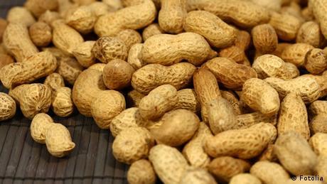 Erdnüsse (Foto: fotolia)