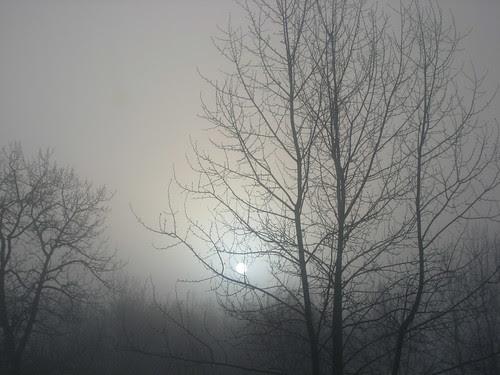 Ice Fog at -40 C