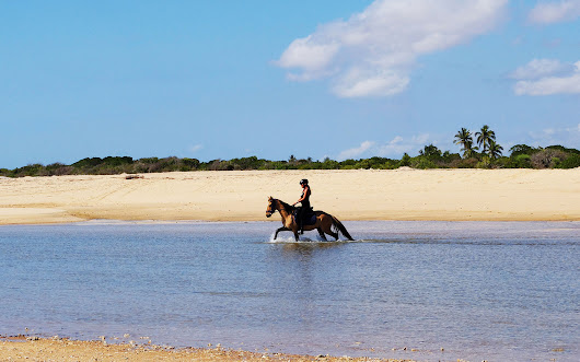 Sports and Excursions - Diamonds stables - Horse experience Mozambique Hotel - Diamonds Mequfi Beach
