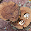 Rustic Wood Ring Boxes - Ear Cuffs - Rock Cairn Necklaces - Jewelry for Men & Women - Dog Treat Bags - MountainUrsusDesigns