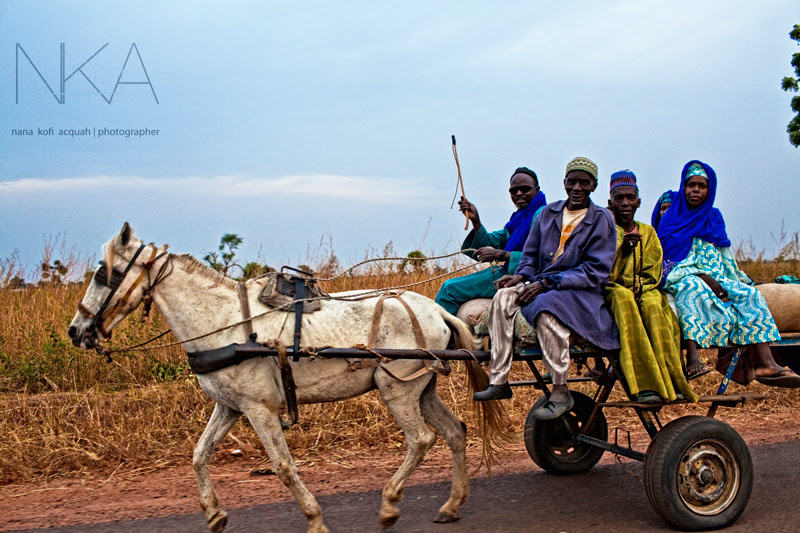 Market Day in Senegal