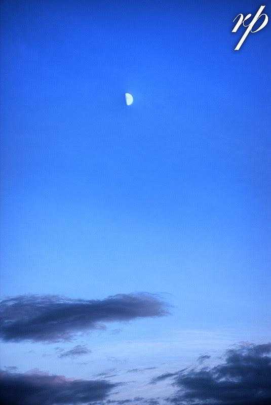 ~ 170/365 Blue Sky ~