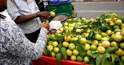 Ổi Ấn Độ ăn không cần rửa Idian Guava streetfood