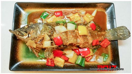 石斑魚11.jpg