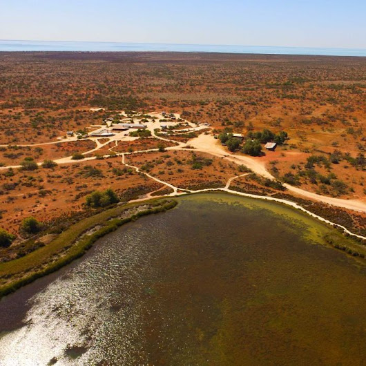 Former Shark Bay sheep station becomes conservation treasure trove