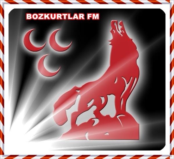 http://www.bozkurtlarfm.com/wp-content/uploads/bozkurt_Resimi1.jpg