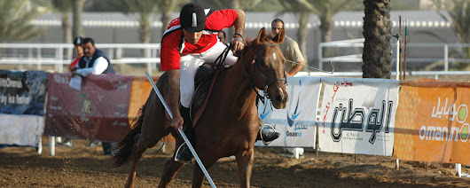 Egyptian Equestrian Federation | Horses and Riders in Egypt | FEI