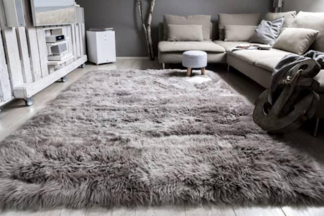 color schemes with blue carpet - Living