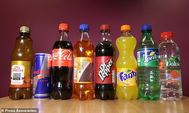 Taxes on soft drinks, as well as alcohol and tobacco, could produce major health gains among society´s poorest, experts claim (Philip Toscano/PA)