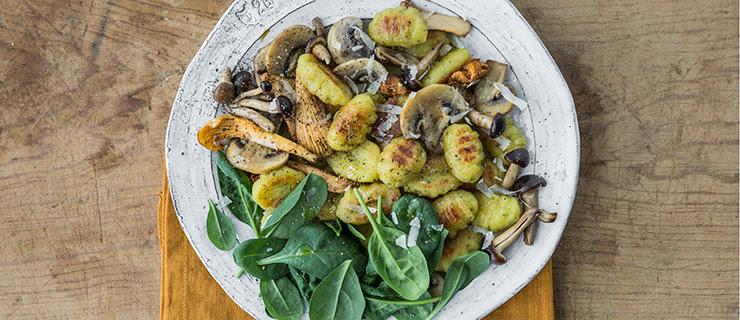 Pioppini Mushroom Recipe