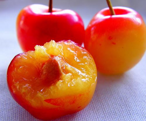 Cherry Season - Le temps des cerises