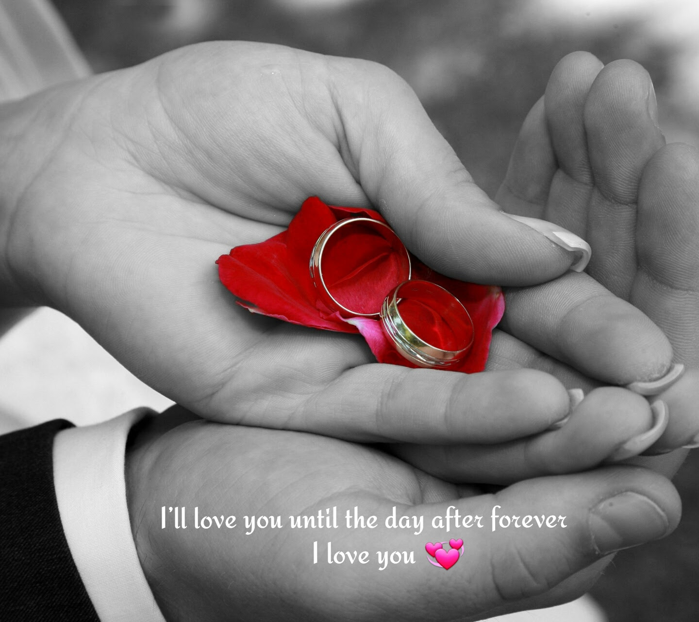 Download Untill The Day Love Forever Image Desktop Laptop