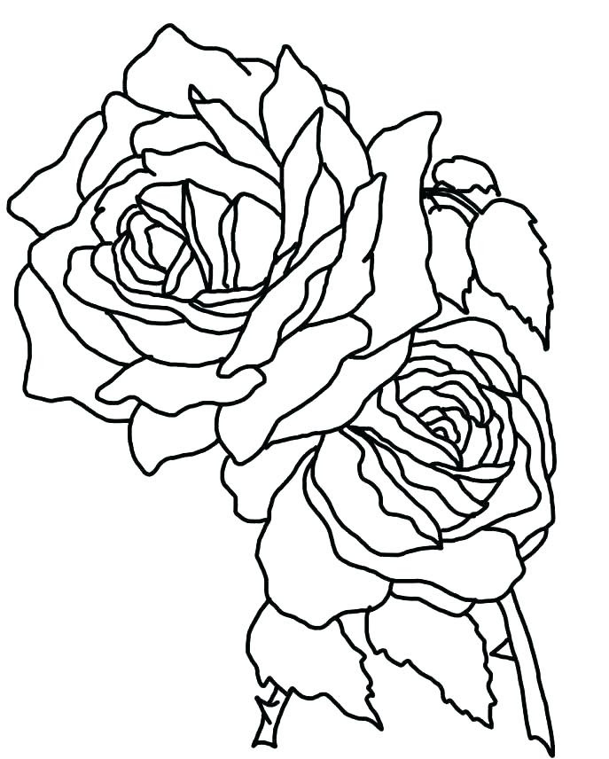 Skull And Roses Coloring Pages at GetColorings.com | Free ...