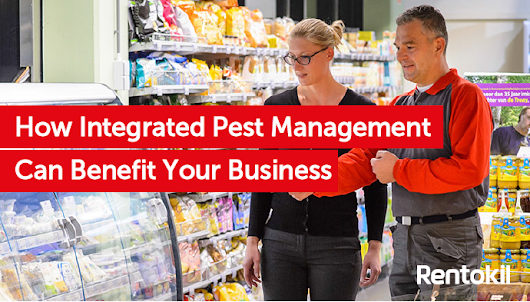 How Integrated Pest Management Can Benefit Your Business